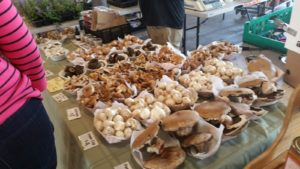 A Mushroom Farmer at Eastern Market - Detroit